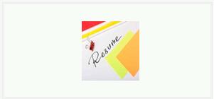 Robb Pruitt Resume